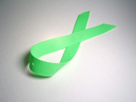 Nylon Webbing from Fabric Store: $1.29 per yard